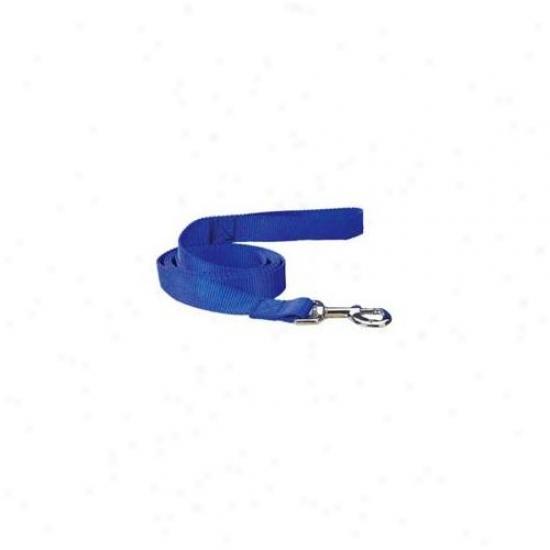 Petedge Tp819 44 19 Guardian Gear Nylon Lead 4 Ft X 1 In Blue