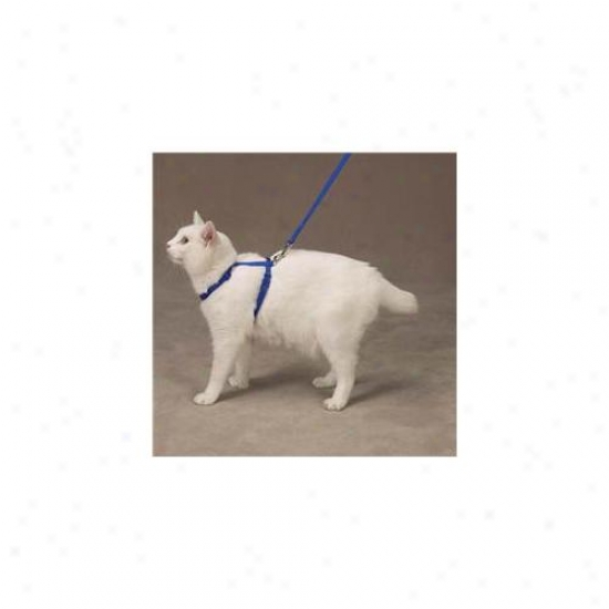Petedge Us2072 94 Savvy Tabby Nylon Cat Lead Ultra Violet