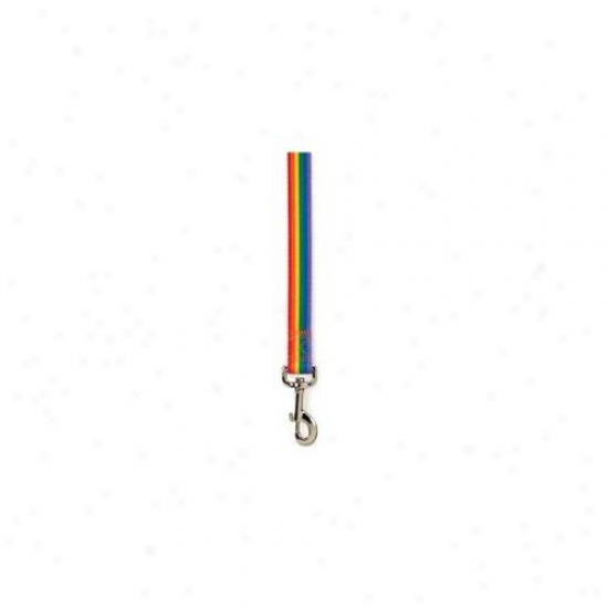 Petedge Za3616 44 81 Cc Puppy Pride Lead 4 Ft X 5/8 In Rainbow