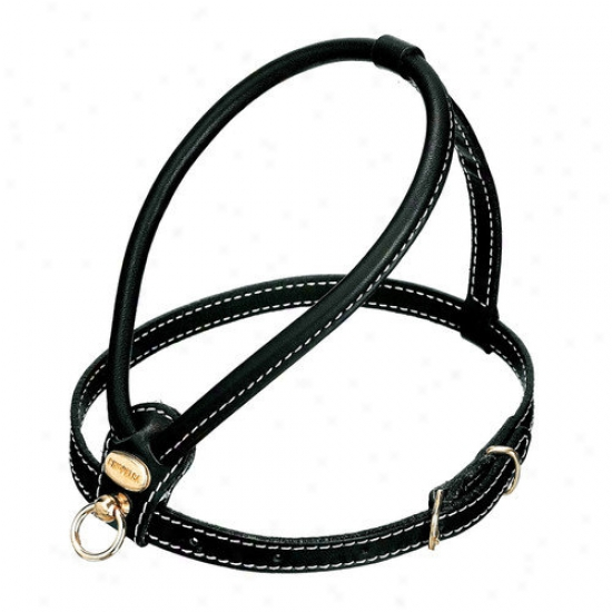 Petego People of ~ Leather Dog Harness In Black