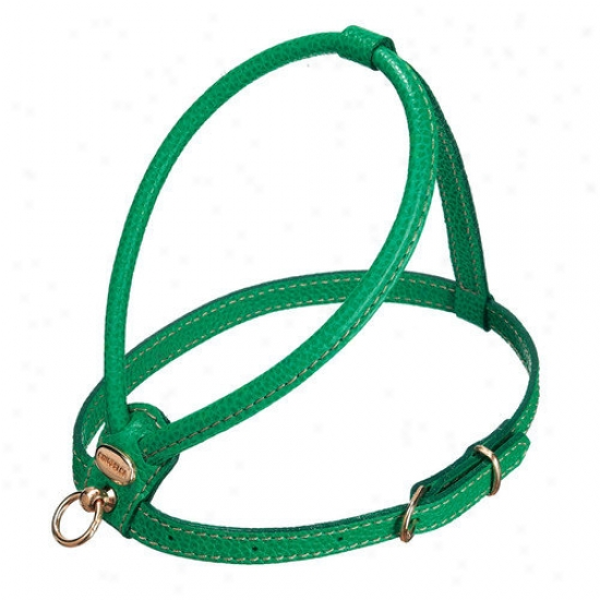 Petego Fashion Leathed Dog Harness In Green