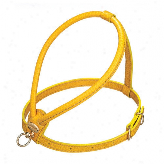 Petego Fashion Leather Dog Harness In Yellow