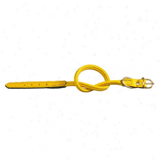 Petego Fashion Tubular Leather Dog Collar In Yellow