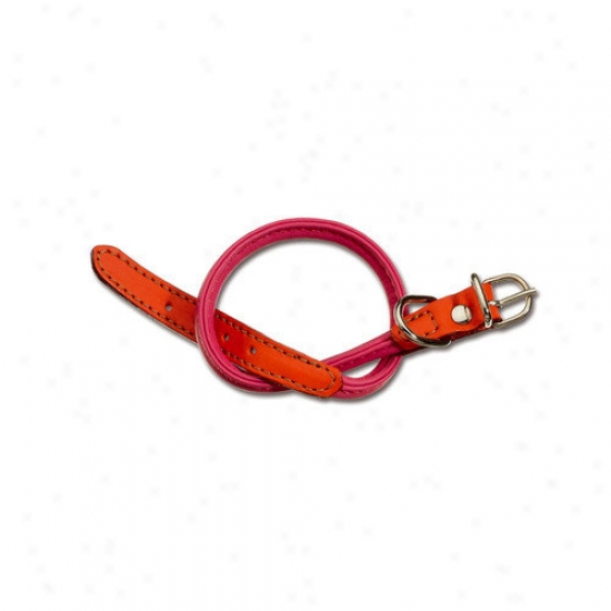 Petego Form Two Color Tubular Leather Dog Collar