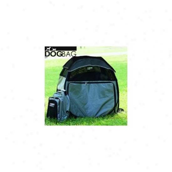 Petego Motor Trend Dog Hoise/tent