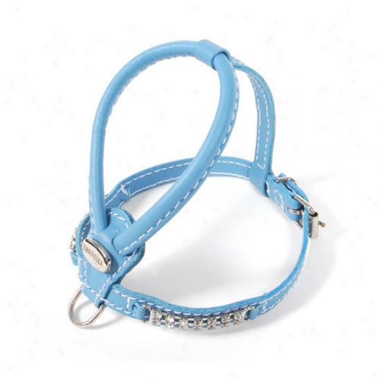 Petego Teacup Leather Dog Harness Through  Crystals In Tiffany Blue