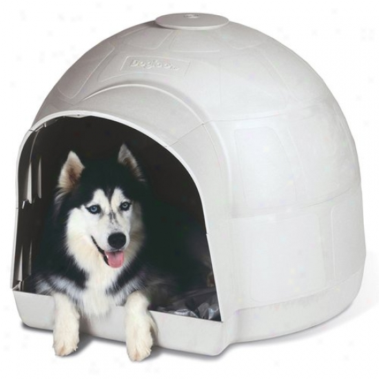 Petmate Aspca Dogloo Dog House