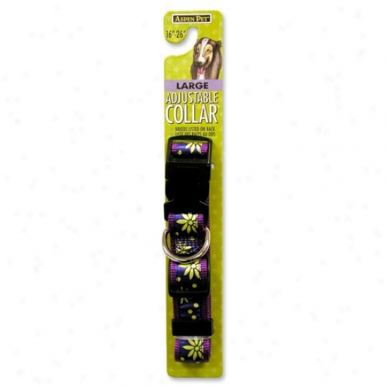 Petmate Aspen Pet 0322369 1-inch X 16-inch To 26-inch Adjustable Dog Collar - Large
