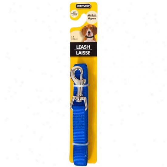 Petmate Aspen Pet 0327849 5/8-inch X 5-foot Lead Three  - Blue