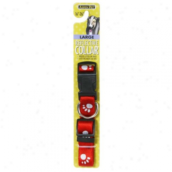 Petmate Aspen Pet 0327879 Red 1-inch X 16-inch Reflective Dog Collar