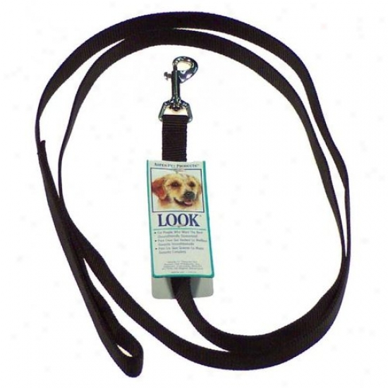 Petmate Aspen Pet 15060 6-foot X 5/8-inch Standard Nylon Training Lead - Black