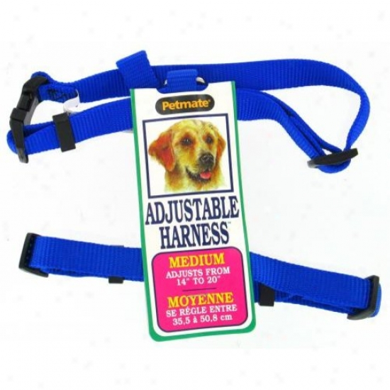 Petmate Aspen Pet 17208 14-inch To 20-ibch Adjustable Dog Harness - Royal Blue