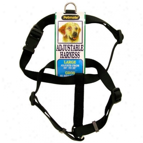 Petmate Aspen Pet 3/4-inch X 20-inch To 28-inch Harness - Black