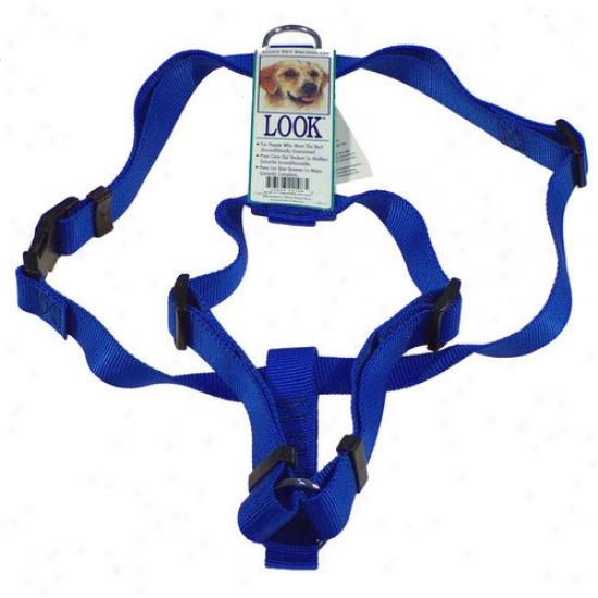 Petmate Aspen Pets Adjustable Dog Harness In Royal Blue