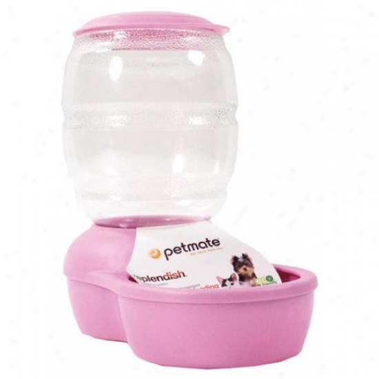 Petmate Replendish Pet Feeder With Microban