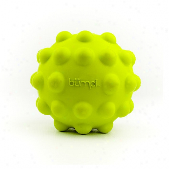 Petprojekt Bumpi Dog Toy