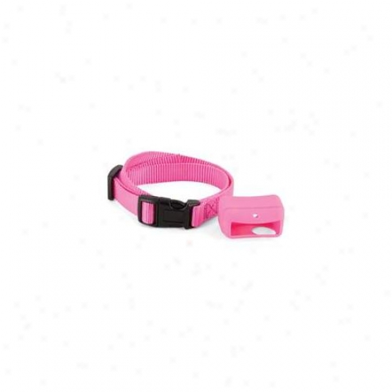 Petsafe Bigskin-p Petsafe Big Skins - Pink - Pac00-12732