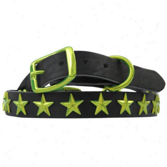 Platinum Pets Medium / Large Genuine Leather Dog Collar Linden With Stars