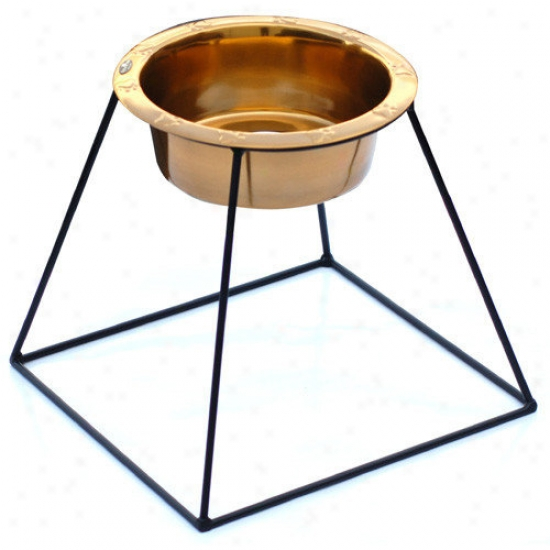 Platinm Pets Pyramid Diner Stand With Wide Rimmed Embossed Bowl