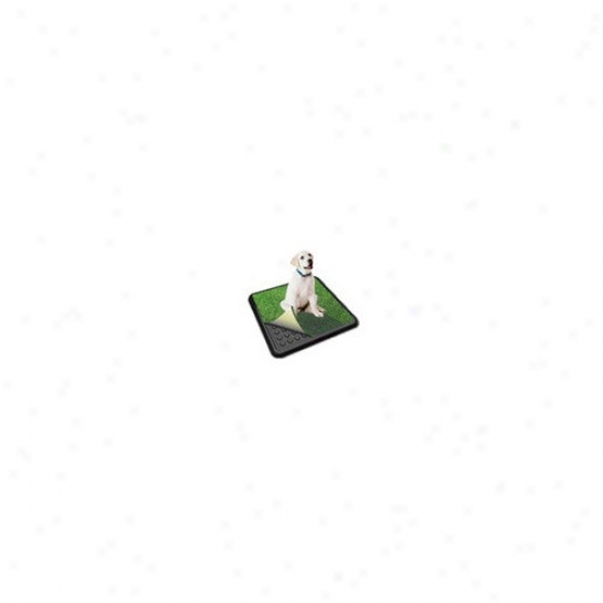 Poochpad Products Turf Classic Dog Potty
