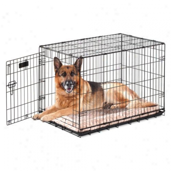 Precision Provalu Great Crate Skgle Door Dog Crate With Generous Pad