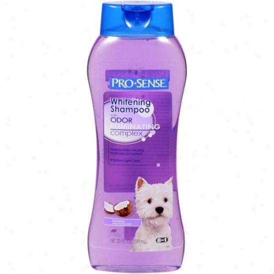 Pro-sense Whitening Coconut Scent Dog Shampoo With Odor-eliminating Complex, 20 Oz