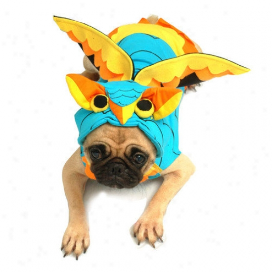 Puppe Love Colorful Owl Dog Costume