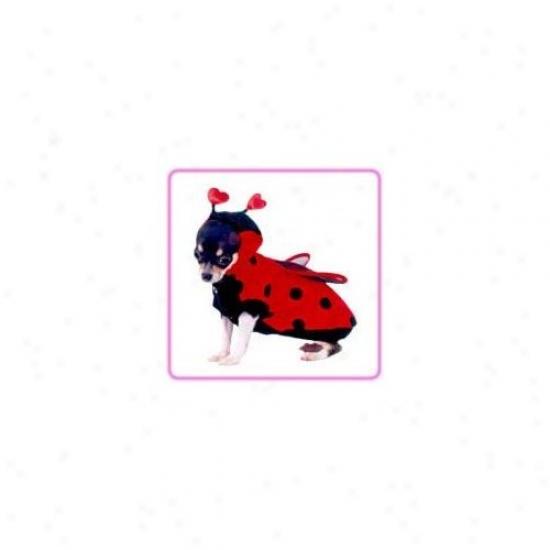 Puppe Love Ladybug Dog Costume