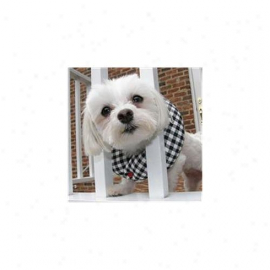 Puppy Bumpers Bwc710 Black And White Check Collar Up To 10 Inch