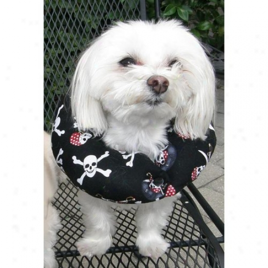Puppy Bimpers Jr1316 Jolly Roger Puppy Bumper 13 To 16in