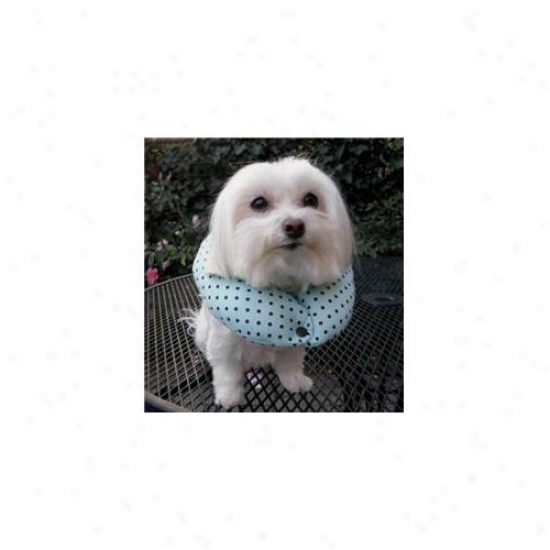 Puppy Bumpers Mcc1013 Mint Chocolate Chip Collar 10 Inch- 13 Inch