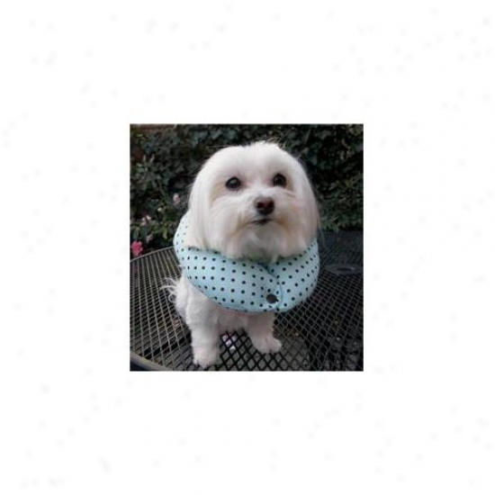 Puppy Bumpers Mcc1316 Mint Chocolate Chip Collar 13 Inch - 16 Inch