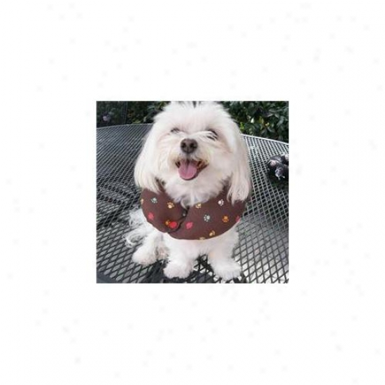 Puppy Bumpers Mudp710 Muddy Paws Collar Up To 10 Inch