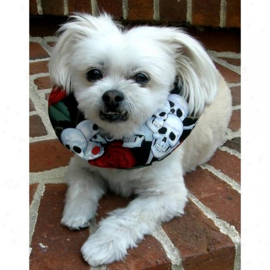 PuppyB umpers Sr1013 Skulls And Roses Puppy Bumper 10 To 13in