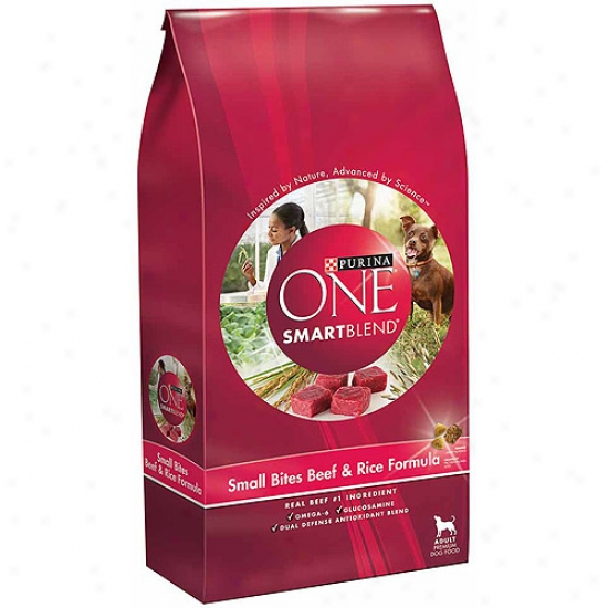 Purina One Beef & Rice Dry Dog Food, 8lb