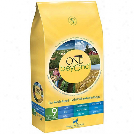 Purina One Beyond Adult Ranch Raised Lamb And Whole Barley Recipe Dog Food, 3.5 Lbs