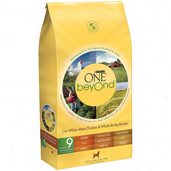 Purina One Beyond Adult White Meat Chicken And Whole Barley Redipe Dog Food, 3.5 Lbs