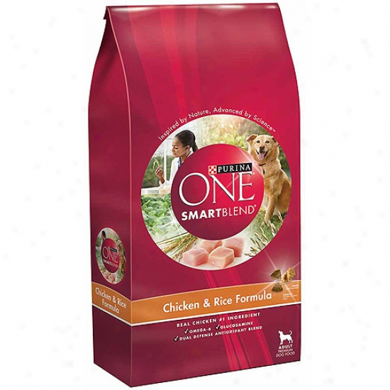Purina One Dog Dry Smartblend Chicken And Rice Adult Formula Dog Food, 8 Lbs