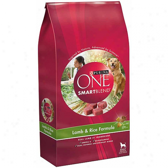 Purina One Dog Dry Smartblend Lamb And Rice Person of mature age Formuls Dog Food, 8 Lbs