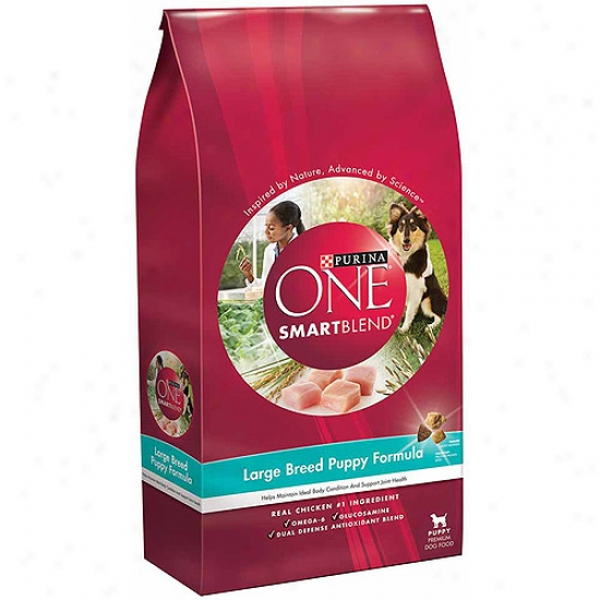 Purina One Smartblend Large Breed Puppyy Formula Dog Food, 16.5 Lbs