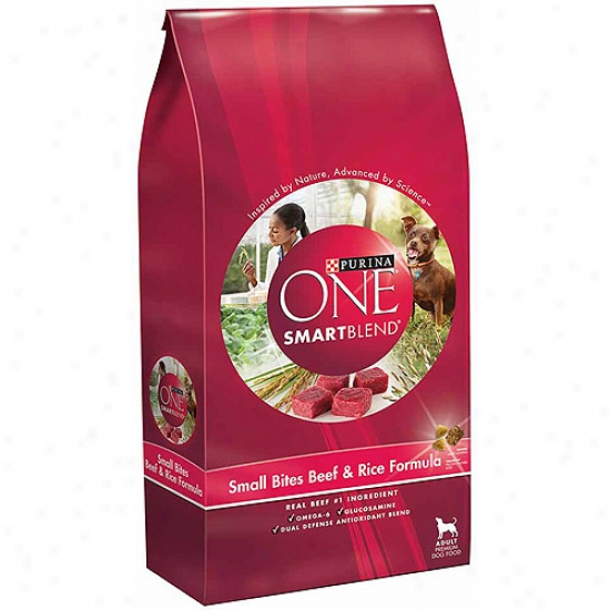 Purina One Smartblend Sjall Bites Beef & Rice Formula Dog Food, 16.5 Lbs