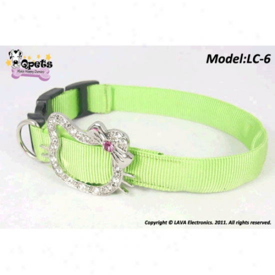 Qpets Led Safety Collar