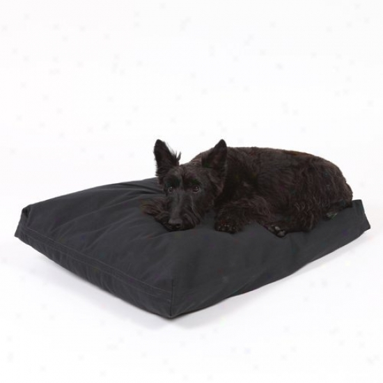 Rectangular Dog Bed Ste - Wicked