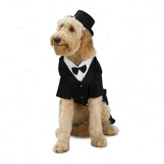 Rubies Dapper Dog Costume