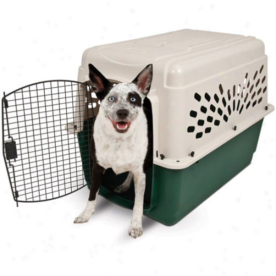 "Ruffmaxx Plastic Dog Kennel, 36w"" X 25""d X 27""h"