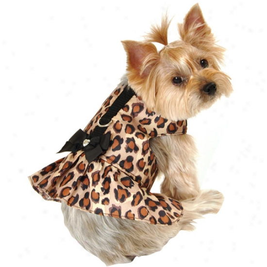 Simply Dog Leopard Calico Consistency Dog Harness Dress, Brown, (multiple Sizes Available)