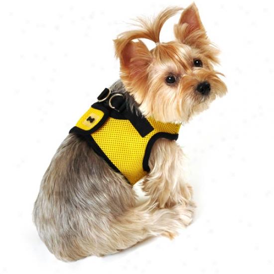 Simplydog Mesh Dog Body Harness, Yellow/black
