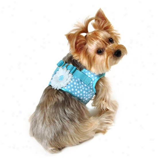 Simplydog Scatter Dot Dog Body Hatness, Blue