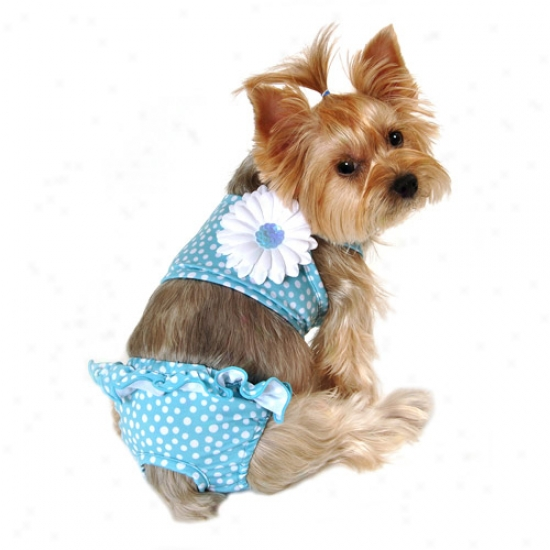 Simplydog Scatter Dot Pull-on Swimsuit For Dogs, Blue, (multiple Sizes To be availed of)