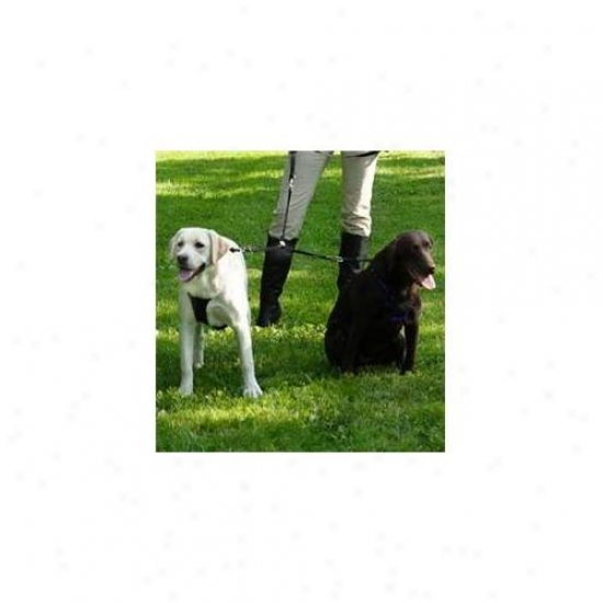 Sporn Pet Dsp31371 Xsmall Double Dog Coupler